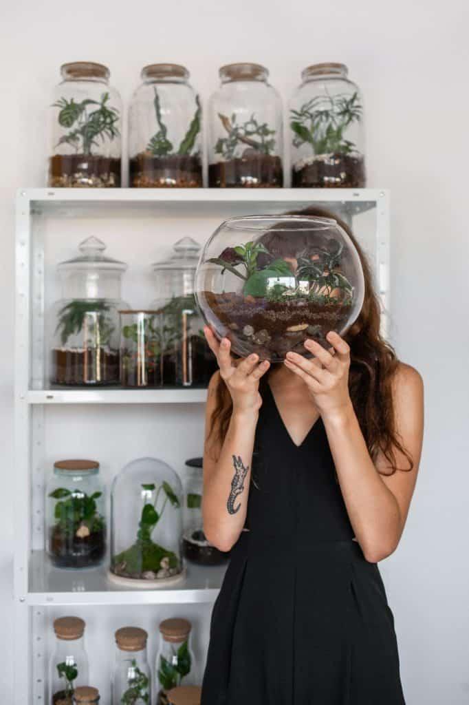 Biljke.plants i biljni terariji