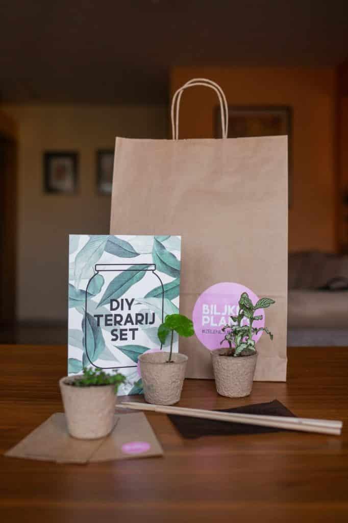 Poklon set biljnog terarija
